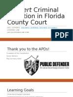 Joel Leppard, Orlando Criminal Defense Attorney- Daubert in Criminal Litigation in County Court