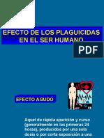 5-Efectos en el ser humano.ppt