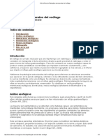 Guía Clínica de Patologías Estructurales Del Esófago