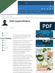 Www Elmostrador Cl Noticias Opinion 2016-10-25 Chile Esquizo