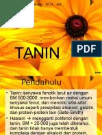 tanin 1.ppt