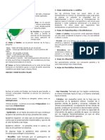 La-Hoja-2016-2017.docx