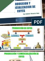 Produccion y Comercializacion de Cuyes-Aabca