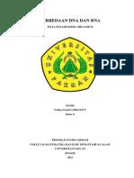 PERBEDAAN DNA DAN RN1.pdf