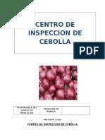 Centro de Inspeccion de Cebolla