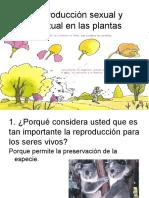 Reproduccio Axesual de Las Plantas