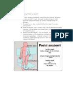 397764_Terminologi Anatomi Dasar (1)