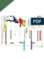 Mapa Pueblos Originarios de Chile Con Simbologia