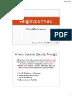 Angiospermas Dicotiledoneas II