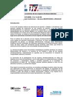 Cepal Autonomia Economica de Las Mujeres Afrodescendientes