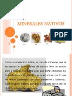 Exposicion Elementos Nativos