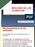 Control Microbiologico de Alimentos 2014