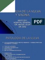 Lesiones de Vulva y Vagina
