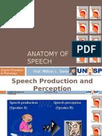 Anatomy of Speech - English Phonetics
