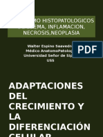 Mecanismo Histopatologicos de Edema, Inflamacion,Neoplasia - Teoria