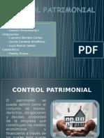 Control Patrimonial - Presentacion (1)