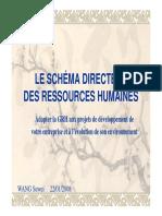 Le Schéma Directeur Des Ressources Humaines