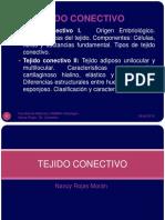 Tej Conectivo UNMSM 2015I