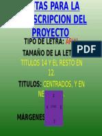 Pautas Para La Transcripcion Del Proyecto