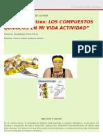 """""""Actividad Tres Los Compuestos Químicos en Mi Vida Actividad"""""""