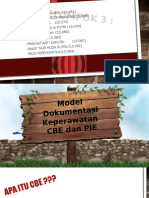 model dokumentasi Cbe & Pie