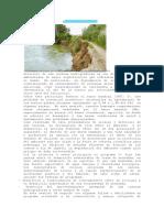 Degradación de Cuencas