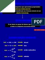 Apresentação Funções Oxig e Nitrog