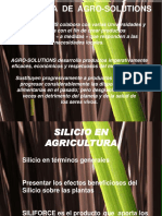 01 Silicio en Agricultura 1399454448