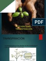 fotosintesis - transpiracion