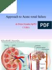 Acute Renal Failure Uniba 28-11-12