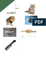Yulma, Leon, Mono, Nudo, 3 Aves, Peine, panal, gato.docx