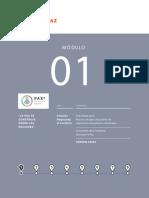 Guia-Modulo-1.pdf