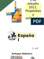 Programas2011propositos y Enfoques