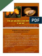 Plagas de Cacao.pdf