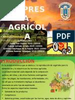 EMPRESA AGRICOLA.pptx
