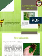 Monografía de cianobacterias toxicas