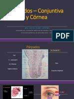 Ponencia 3.1 Conjuntiva y Córnea Dra. Alicia Namoc