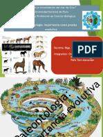 Seminario 01.-Paleontología Importancia Como Prueba Evolutiva. Avances y Perspectivas. Seminario