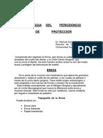 periodoncio_proteccion