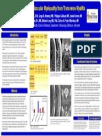 AAN-2013-myelopathy-poster.pdf