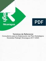 TdR Consultoria - Plan Estrategico Sociedad Nic