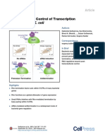 RHO Transcriptional Terminator