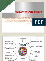 Culture Crap