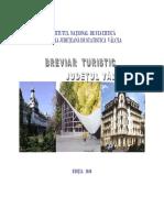 BREVIAR TURISM VALCEA 2010.pdf