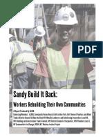 Sandy Build It Back Review