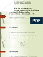 Detecção de Pseudomonas Aeruginosa Na Água Distribuída Na