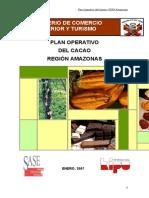 Pop Cacao Amazonas