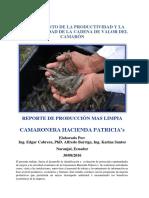 Reporte de Produccion Mas Limpia Cadena de Valor Camaron