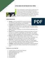 Animales en Peligro de Extincion Del Peru