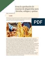 Senasa Gestiona La Aprobación de Nuevas Tolerancias de Plaguicidas Para Cultivos de Kiwicha